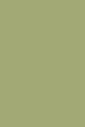 SAXON GREEN-0