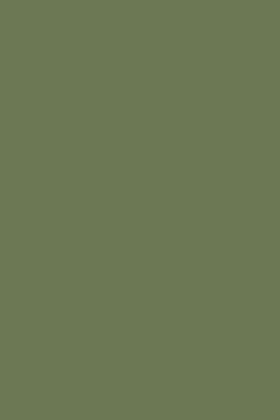 CALKE GREEN-0