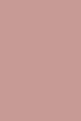 CINDER ROSE-0