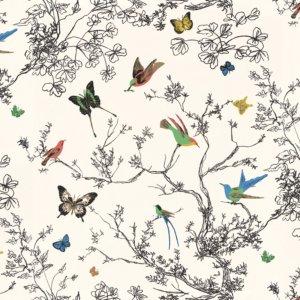 BIRDS AND BUTTERFLIES-0