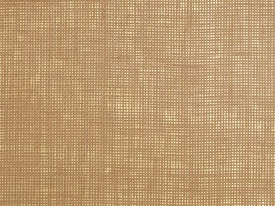 METALLIC RAFFIA ADOBE/GOLD-0