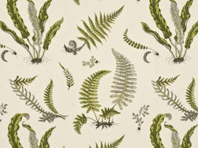 FERNS - LIME/GREY -0